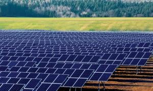 Solar_Farm-web