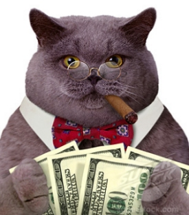 Gaston Fat Cat Politicians