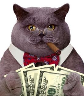 Gaston Fat Cat Politicians