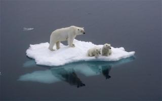 global-warming_2729041b
